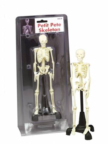 alternate image of Petit Pete Skeleton