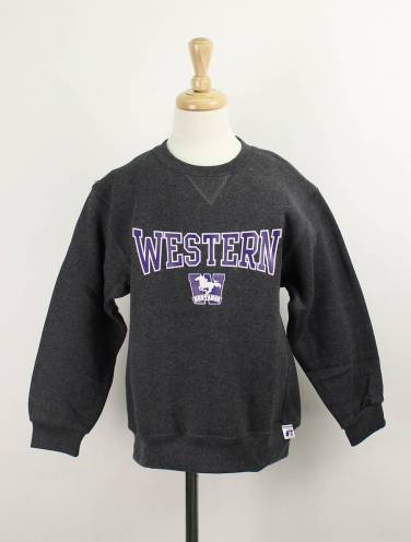 image of Charcoal Western Mustangs Youth Hoodie