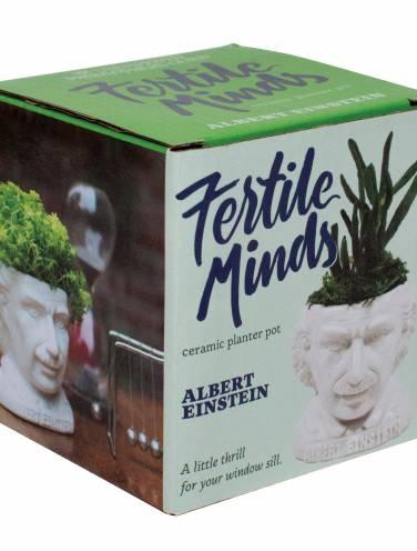 image of Einstein Fertile Mind