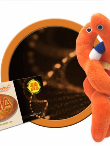 image of Giant Microbes Dna  Pd-0200
