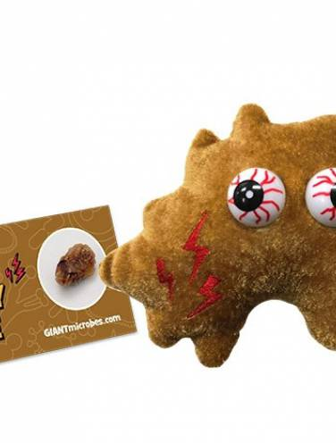 image of Giant Microbes  Kidney Stone  Pd-0426
