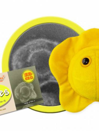 image of Giant Microbes Herpes