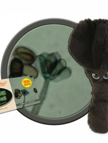 image of Giant Microbes Toxic Mold   Gmus-Pd-0755