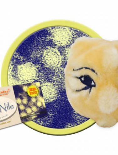 image of Giant Microbes West Nile