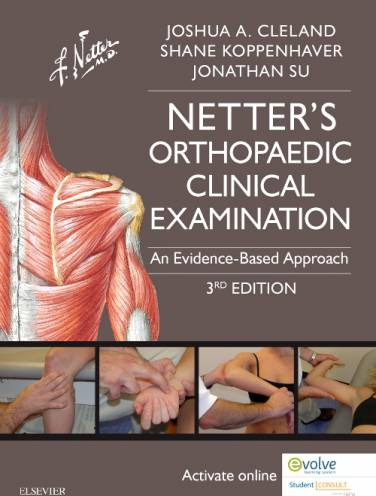image of Netters Orthopaedic Clinical Examination An Evidence Based