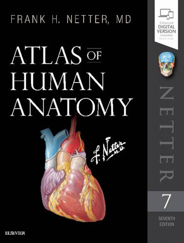 image of Atlas Of Human Anatomy  *Damaged*