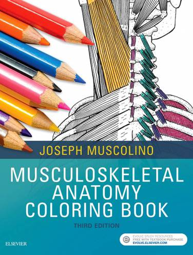 image of Musculoskeletal Anatomy Coloring Book
