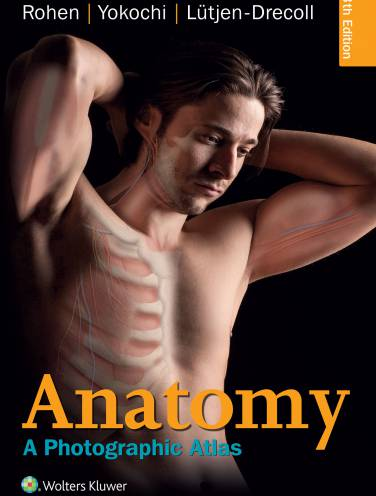 image of Anatomy  A Photographic Atlas