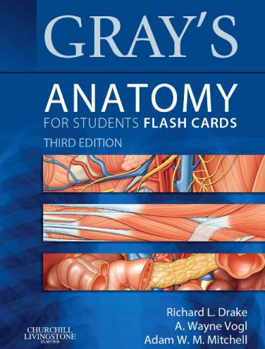 image of Grays Anatomy For Students Flash Cards