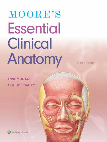 image of Moores Essential Clinical Anatomy