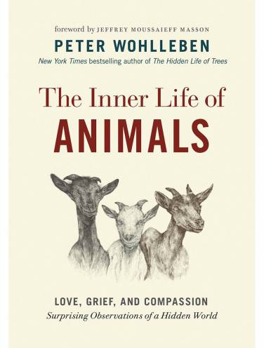 image of Inner Life Of Animals