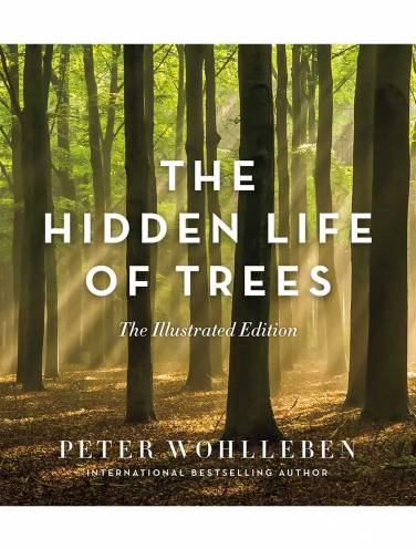image of Hidden Life Of Trees Illustrated