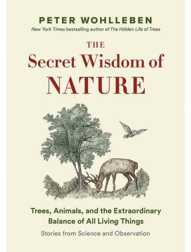 image of Secret Wisdom Of Nature