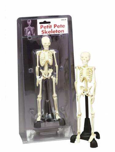 image of Petit Pete Skeleton